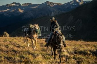 Canadian Wildlife Horse pack trip (4day trip)