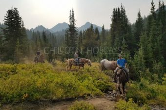 We are not strangers to the Wilderness – guest story