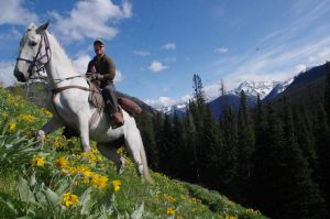 Horseback Guide Training