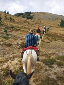Outfitter horsepack riding through the Chilcotin. Photo by Verena Foxx.