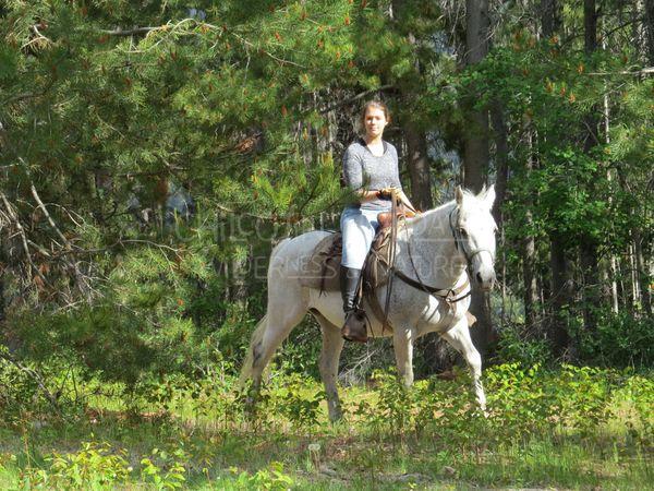 Raphaelle - Western Horse Riding Orientation