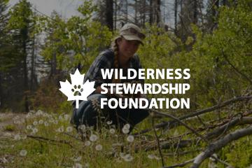 Wilderness Stewardship Foundation logo