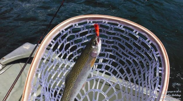fly-fishing-tours-11