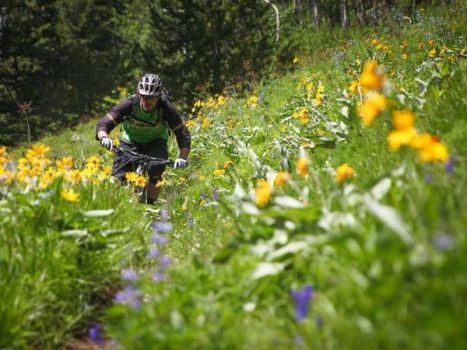 Chilcotin Holidays Mountain Biking adventures