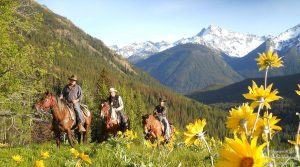 Chilcotin Holidays Wilderness and Nature Wilderness Horseback Guide