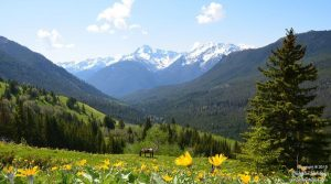 Chilcotin Holidays Wilderness & Nature