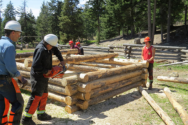 Log Cabin Building Course